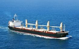 Phó Thủ tướng đốc thúc tiến độ cổ phần hóa doanh nghiệp vận tải biển