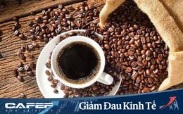 Thị trường cà phê toàn cầu dự báo sẽ gặp khó khăn ít nhất đến giữa năm 2020