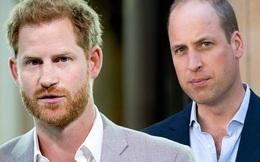 Hoàn cảnh trái ngược của hai Hoàng tử Anh: Người ngày một thăng tiến, địa vị được củng cố, người rũ bỏ dòng họ và phải chôn chân một chỗ
