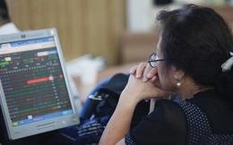 Hai năm kể từ đỉnh lịch sử, các cổ phiếu vốn hóa lớn giảm như thế nào?
