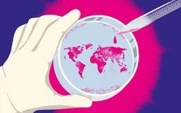 Cuộc chiến của y tế thế giới với virus corona đã đạt được kết quả gì?