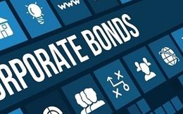 Doanh nghiệp bất động sản, dịch vụ đẩy mạnh huy động trái phiếu