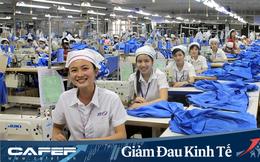May Việt Tiến (VGG) lên kế hoạch năm 2020 sụt giảm 70% do tác động từ dịch Covid 19