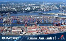 Tại sao các tập đoàn đa quốc gia thích đặt nhà máy ở Việt Nam ngay cả khi dịch Covid-19 bùng nổ?