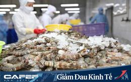 Năm 2020 Minh Phú đặt mục tiêu lãi 1.368 tỷ đồng cao gấp gần 3 lần thực hiện 2019