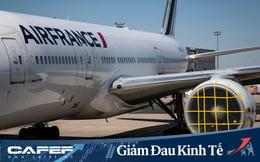 Các hãng hàng không khốn đốn với việc dừng đỗ, bảo dưỡng và... ngăn chim làm tổ trong máy bay