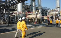 PV GasD (PGD) đặt kế hoạch lãi sau thuế 204 tỷ đồng năm 2020 dựa trên kịch bản giá dầu 60USD/thùng