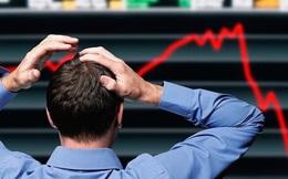 HAGL Agrico (HNG): Cổ phiếu bị đưa vào diện cảnh báo, chỉ được giao dịch nửa phiên từ ngày 23/4