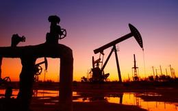 Giá dầu bao giờ sẽ hồi phục?