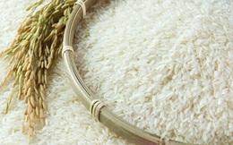 Chính phủ tạm ứng hạn ngạch 100.000 tấn gạo để gỡ khó cho doanh nghiệp xuất khẩu
