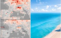 Nhìn những bức ảnh này, bạn sẽ không tin Trái Đất lại hồi sinh mạnh mẽ trong lúc dịch bệnh Covid-19 như vậy: Điều kỳ diệu hiếm hoi!