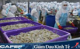 Công ty mẹ Minh Phú (MPC): Quý 1 lãi 137 tỷ đồng giảm 34% so với cùng kỳ