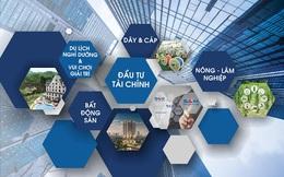 Sam Holdings (SAM): Năm 2020 đặt mục tiêu lãi 124 tỷ đồng giảm 8%