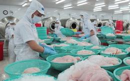 Mỹ giảm thuế chống bán phá giá đối với cá tra – basa