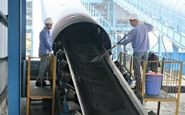 Nhiều doanh nghiệp ngành than lãi tăng trưởng 2 chữ số quý 1/2020