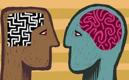 Ngộ nhận giữa khôn ngoan và khôn lỏi, trước sau gì bạn cũng tự đẩy mình vào hố sâu, thân bại danh liệt