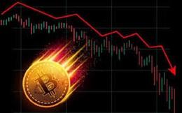 Bitcoin tăng nhẹ, Ripple 'bốc đầu' 9,2%