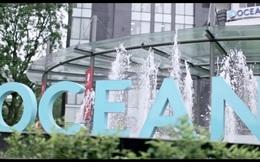 Ocean Group (OGC): Quý 1 lãi 220 tỷ đồng, tăng đột biến so với cùng kỳ