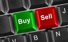 PVC Idico (PXL): Tổng giám đốc đăng ký mua 15 triệu cổ phiếu