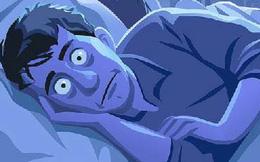 Một giấc ngủ ngon sánh ngang trăm thang thuốc bổ: Đây là tất cả những gì bạn cần biết để có thể khoẻ mạnh, trường thọ từ việc ngủ ngon