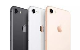 iPhone SE 2020 mới về Việt Nam giá đã giảm mạnh, chỉ từ 10,9 triệu đồng