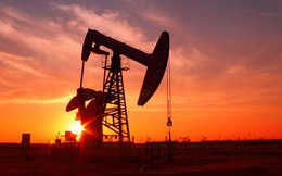 Lý do đặc biệt khiến Nga và Ả Rập Xê Út sẵn sàng để giá dầu lao dốc