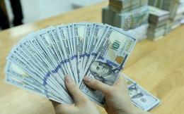Tỷ giá VND/USD bất ngờ tăng mạnh trở lại
