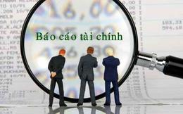 Rạng Đông Holding (RDP) điều chỉnh giảm gần 12 tỷ đồng lợi nhuận năm 2019 sau kiểm toán