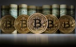 """""""Cơn sốt halving"""" năm nay liệu có khiến Bitcoin tăng giá mạnh?"""