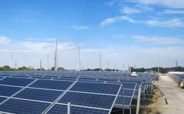 Bình Phước dự kiến vận hành nhà máy điện mặt trời Thác Mơ