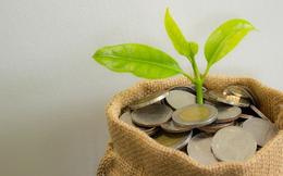 Điểm danh những doanh nghiệp chốt quyền nhận cổ tức bằng tiền, bằng cổ phiếu và cổ phiếu thưởng tuần 1-5/6