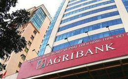 Dự kiến Agribank sẽ được tăng vốn bằng ngân sách tối đa 3.500 tỷ đồng