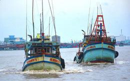 Gỡ khó cho khai thác, chế biến và tiêu thụ hải sản