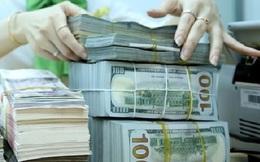 Lãi suất liên ngân hàng giảm mạnh tất cả các kỳ hạn