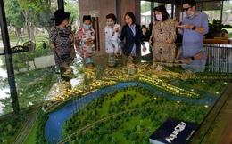 """Hé lộ kế hoạch đầu tư bất động sản 2020 của """"ông lớn"""" Novaland"""