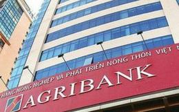 Tỷ lệ an toàn vốn Agribank nằm sâu dưới chuẩn