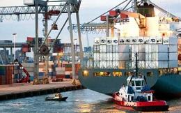 VNT Holdings kiên trì muốn mua hơn 3,3 triệu cổ phiếu VNT