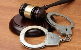 Thao túng cổ phiếu gây thiệt hại cho gần 1.500 nhà đầu tư, Chủ tịch KSA Phạm Thị Hinh bị tuyên án 18 tháng tù