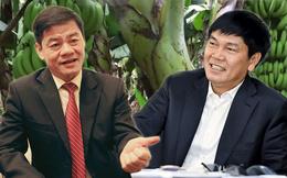 Hai ông lớn công nghiệp nặng đầu tư nông nghiệp: Hòa Phát thắng lớn với chăn nuôi, Thaco kiên trì tái cấu trúc đưa HAGL Agrico và Hùng Vương thoát lỗ