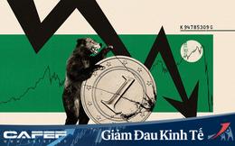 Economist: Rơi vào lãnh thổ 'con gấu' với tốc độ nhanh chưa từng thấy, nhưng 2020 vẫn là một năm 'phi thường' của TTCK!