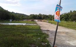 Tp.HCM kiên quyết thu hồi các dự án chậm triển khai, đất bỏ hoang trên địa bàn