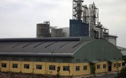 Bộ Công Thương báo cáo gì về nhà máy bột giấy nghìn tỷ đồng 'ôm' nợ PVcomBank?