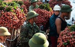 """""""Nguồn sống"""" của hàng triệu nông dân Việt Nam gặp khó, làm sao tìm """"cơ"""" trong """"nguy""""?"""