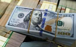 Vì sao tỷ giá USD/VND rơi sâu?