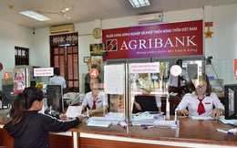 Tỷ lệ an toàn vốn theo Basel II cuối tháng 3 của Agribank chỉ đạt 6,9%