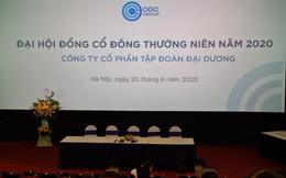 Chưa đủ số cổ phần biểu quyết tham dự, ĐHĐCĐ Ocean Group diễn ra bất thành