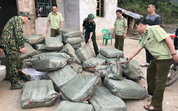 Chặn đứng 1 tấn nầm lợn bốc mùi hôi thối nhập lậu vào Việt Nam