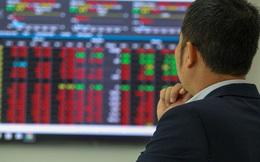 Cổ phiếu Công ty chứng khoán: Triển vọng tích cực từ KQKD quý 2?