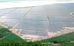 Sự bùng nổ của năng lượng mặt trời ở miền Nam