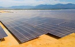 Tại sao điện mặt trời bùng nổ ở miền Nam?